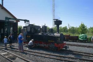 Brigadelok z Lotyšska na řepařce